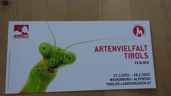 Flyer zur Veranstaltung mit Insekt als Titelbild