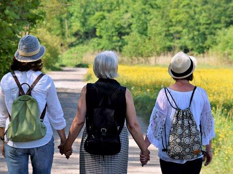 Drei Frauen von hinten beim Spazieren halten Hände