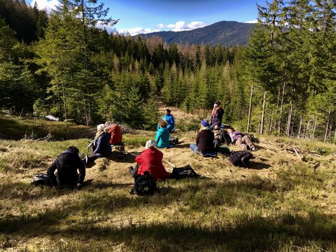 Leute sitzen im Wald am Waldbaden