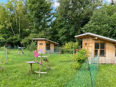 Hühnerställe im Garten