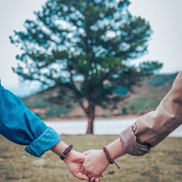 Zwei Personen halten Hände vor einem Baum
